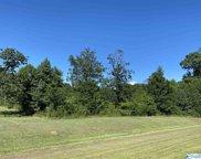 Alabama Highway 157, Town Creek image