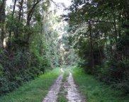 Partridge Ln., Monticello image