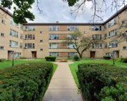 2623 West Fitch Avenue Unit 2E, Chicago image