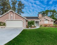 9073 Blaine Road, Spring Hill image