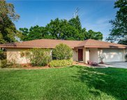 830 Hickory Lane, Palm Harbor image