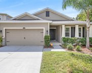 10411 Avian Forrest Drive, Riverview image