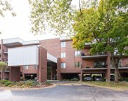 6545 Main Street Unit #204, Downers Grove image