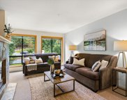 4821 Spearhead Drive Unit 307, Whistler image