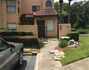 4746 Chevy Place Unit 161A2, Orlando image