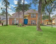 19607 Dianeshire Drive, Spring image