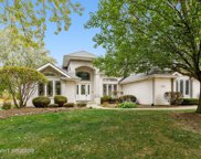218 Sawgrass Drive, Palos Heights image