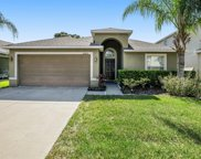 10405 White Peacock Place, Riverview image
