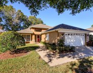 1121 Daleside Lane, New Port Richey image