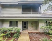 303 Old Mill Pond Road, Palm Harbor image