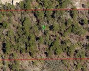 5149 N Smokey Mountain Point, Crystal River image