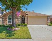 11528 Maddie Avenue, Fort Worth image