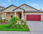21894 Crest Meadow Drive, Land O' Lakes image