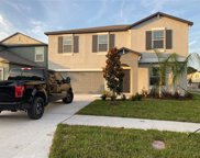 7420 Pearly Everlasting Avenue, Tampa image