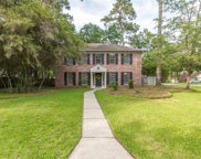 2 Reedy Pond Court, The Woodlands image