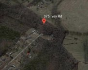375 Ivey Rd, Chesnee image