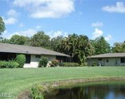 5872 Wild Olive Ter, Fort Myers image