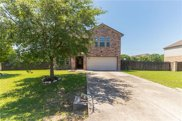 205 Silver Lace Ln, Round Rock image