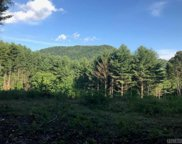 0 Fork Mountain Road, Out Of Area image