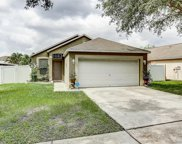 10552 Opus Drive, Riverview image