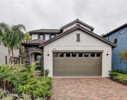 19728 Roseate Drive, Lutz image