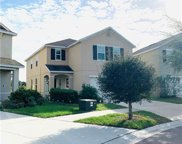 10414 Whispering Hammock Drive, Riverview image