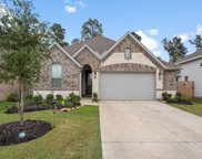 25318 Pirates One Drive, Tomball image