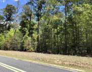 Piney Branch Road, Hopkins image
