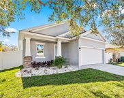 29346 A Chandler Trace, Wesley Chapel image
