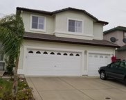 8222  Madrone Woods Place, Antelope image
