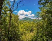 575 Bryson Branch Road, Cashiers image