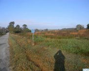 Tract # 1 County Road 142, Sand Rock image