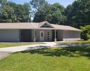 8215 Sunny Vale Place, Tampa image