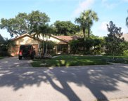 1065 Falcon Ridge Lane, Palm Harbor image