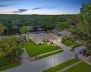 1943 Forest View Drive, Palm Harbor image