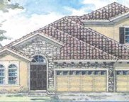 21852 Amelia Rose Way, Land O' Lakes image