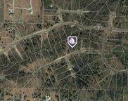 37 A Weeping Oak, Royse City image