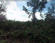 28183 Barstow Drive, Punta Gorda image