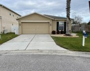 17453 Garden Heath Court, Land O' Lakes image