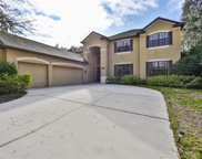 8848 Alafia Cove Drive, Riverview image