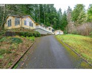 89400 LEVAGE  DR, Florence image