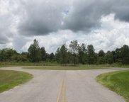 342 SW HEALAN CT, Fort White image