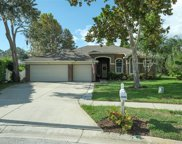 1698 Water Oak Drive, Tarpon Springs image