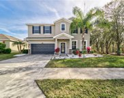 2812 Holly Bluff Court, Plant City image