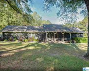 194 Miracle Hills Rd, Springville image