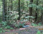 Bent Tree Lane, Sevierville image