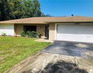 17260 Raintree Road, Lutz image