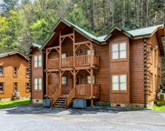 315 Caney Creek Rd, Pigeon Forge image