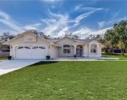 12116 Spring Hill Drive, Spring Hill image