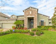 19425 Whispering Brook Drive, Tampa image